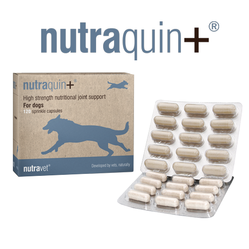 nutraquin+