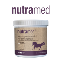 nitrated for horses