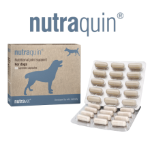 nutraquin 60 for dogs