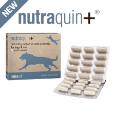 nutraquin+ for dogs & cats - NEW 30 capsules boxes