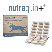 nutraquin plus dog 120