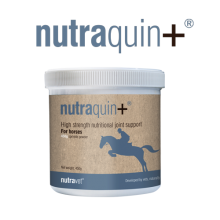 nutraquin equine