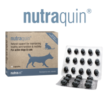 nutraquin for dogs and cats
