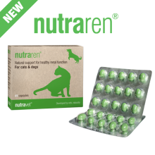 Vet Kidney supplements