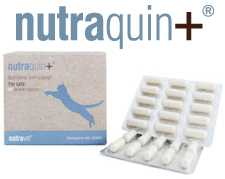 nutraquin for cats