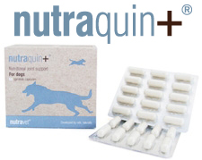 nutraquin supplements