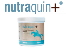 nutraquin for horses