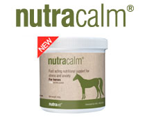 nutracalm for horses